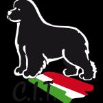 Logo Club Italiano del Terranova