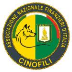 Logo ANFI